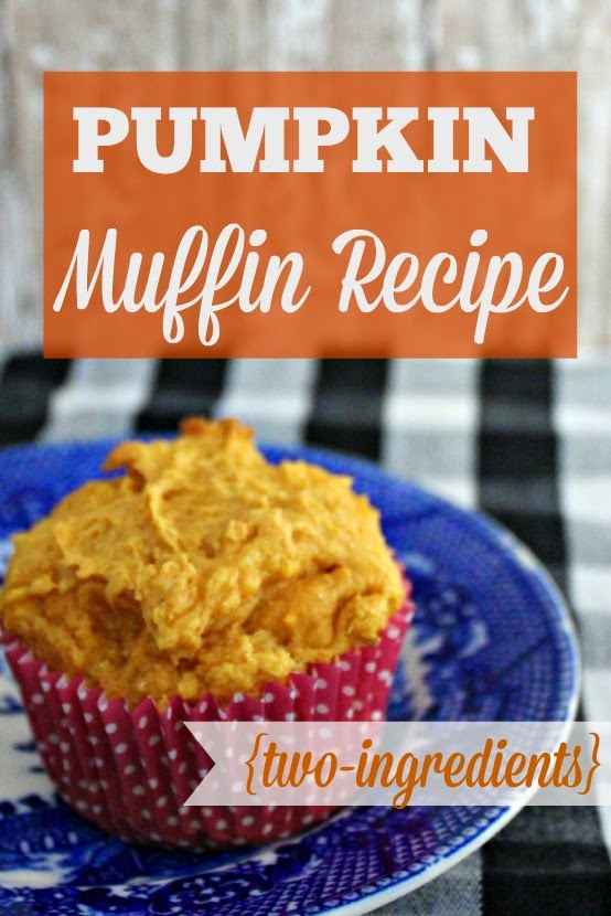 Tasty Two-Ingredient Pumpkin Muffins