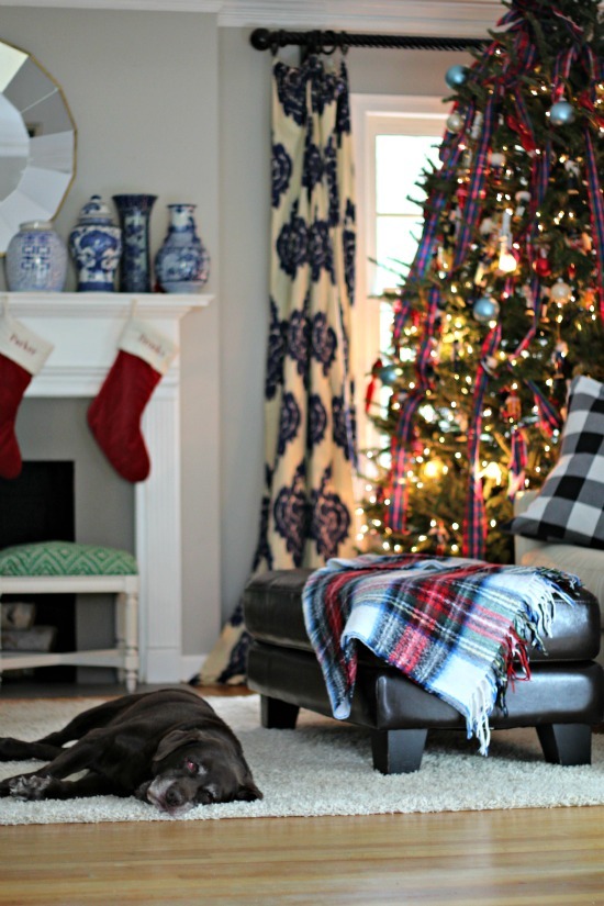 Southern-State-Mind-Christmas Home Tour (76)