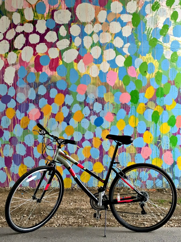 columbia bike 1