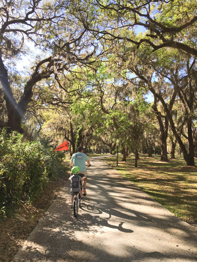 Things to Do In Jekyll Island