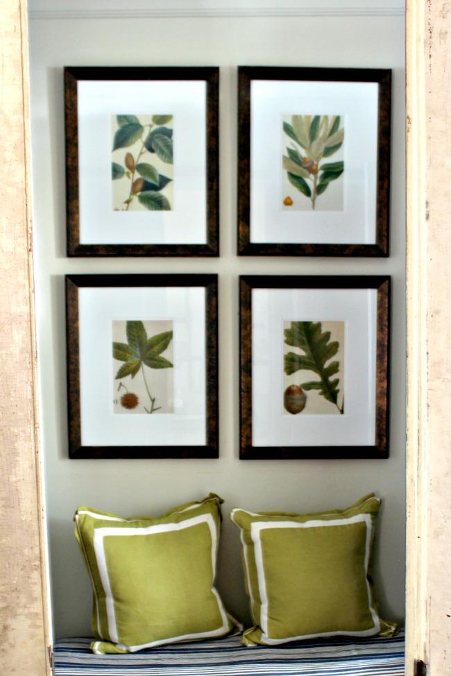Botanical Images Free