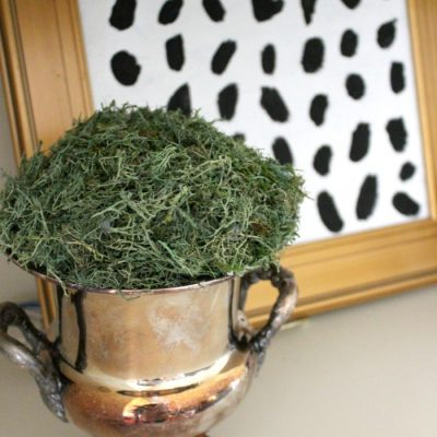 {Easy DIY} Moss Ball Urns