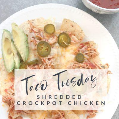 Taco Tuesday  || Shredded Crockpot Chicken