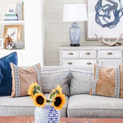 20 Minute Organizing || Throw Pillow Storage